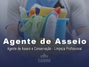 Agente De Asseio E Conservação – Limpeza Profissional